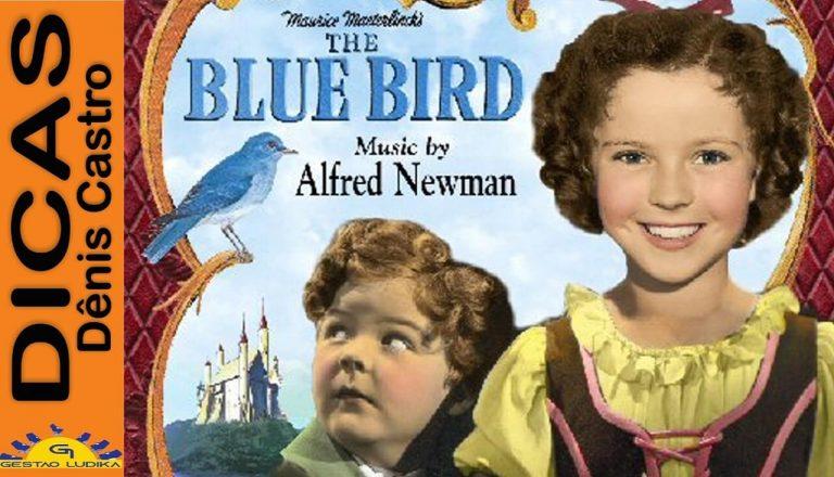 Reflexão Lúdica sobre o Filme Pássaro Azul